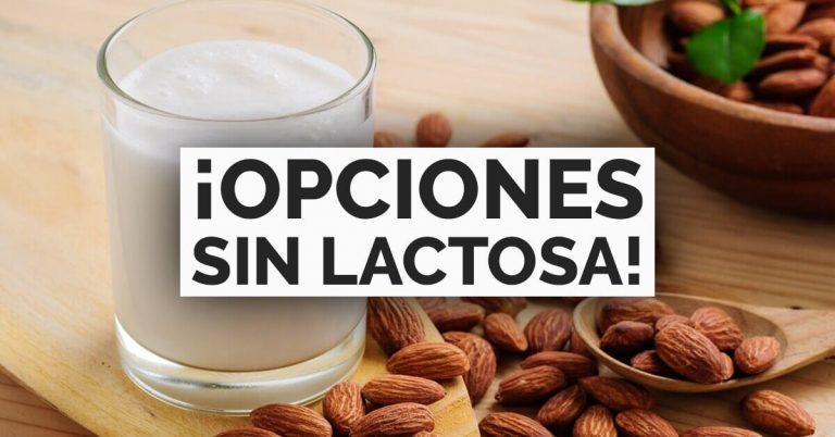 Alimentos libres de lactosa que podrás disfrutar.
