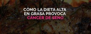 Dieta alta en grasa provoca cáncer de seno.