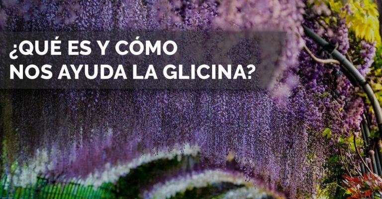 Cómo nos ayuda la Glicina