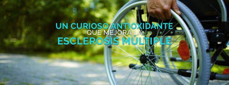 El ácido lipoico mejora la esclerosis múltiple.