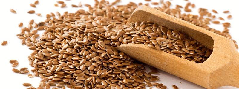 La semilla de linaza