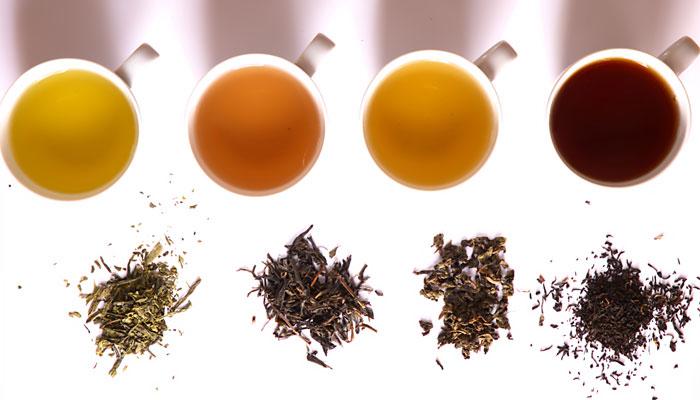 Empieza a tomar té