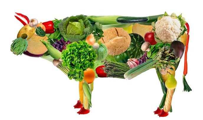 Los peligros de una dieta basada en plantas