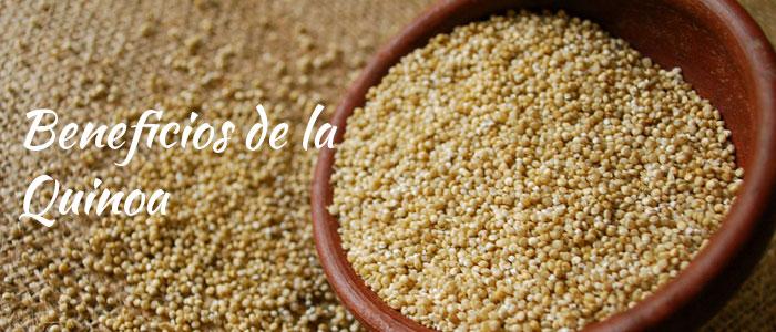 Porqué comer quinoa