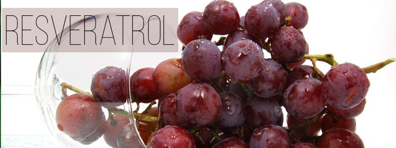 Alimentos con resveratrol