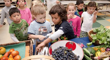 Tips para que los niños coman más sano