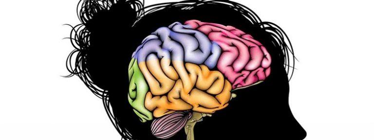 La salud de tu cerebro