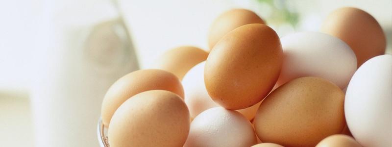 El huevo tiene muchos nutrientes