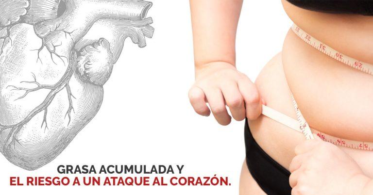 La ubicación de la grasa en tu cuerpo