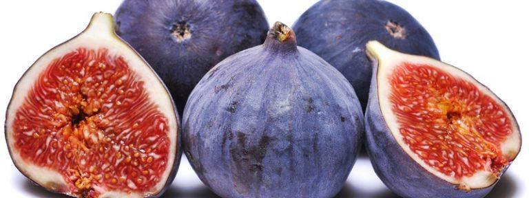Alimentos saludables de otoño
