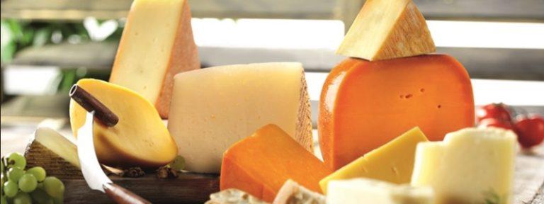 ¿El queso es malo en realidad?